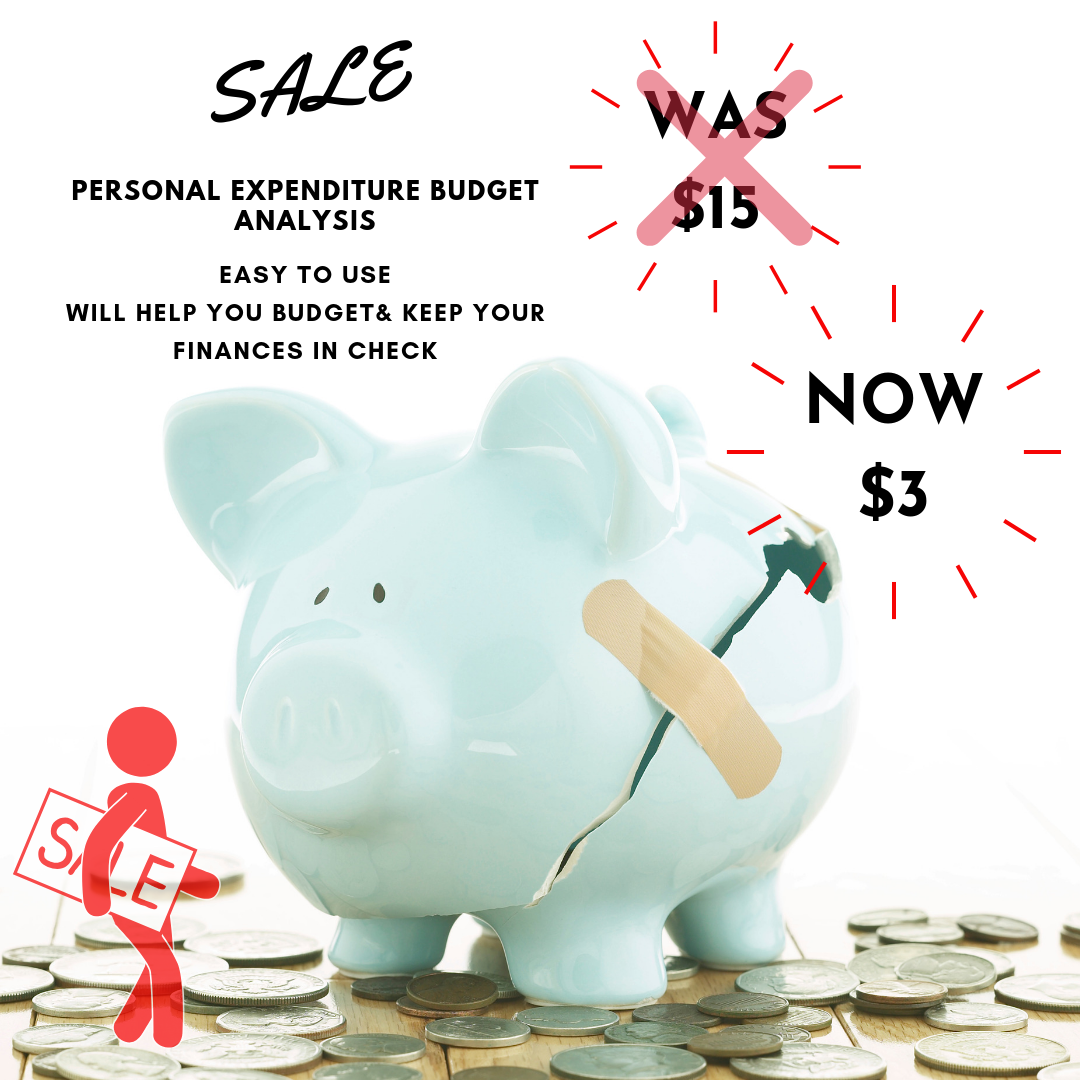 Personal Expenditure Income Analysis Tool